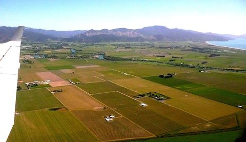 Marlborough: New Zealand's largest producer of Pinot Noir
