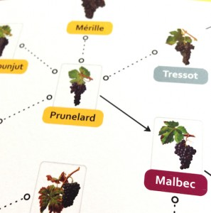 Prunelade is Malbec's genetic father
